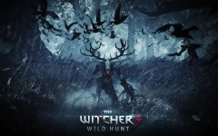 the-witcher-3-wild-hunt-37830-wp